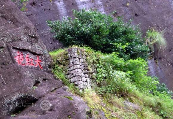 dai-hong-bao1-580x401