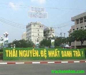 de-nhat-tra-thai-nguyen(1)(1)